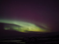 Nordlichter in den Westfjorden Islands