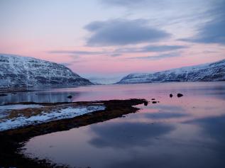 In den Westfjorden Islands