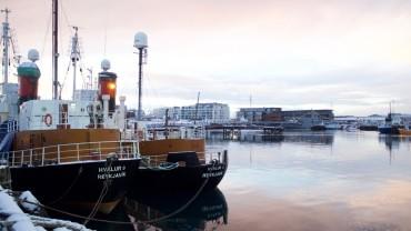Im Hafen Reykjavíks