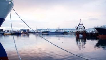 Reykjavíks Hafen