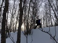 Durch den Wald zum Storhaugen