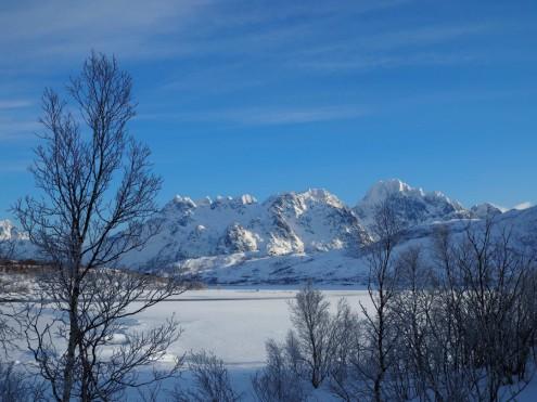 Frost auf den Lofoten