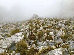 Hoch und steil: 200 hm fast senkrecht bergauf