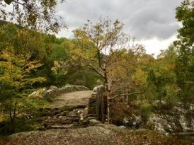 Scotland: River Moriston