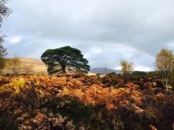 Scotland: Beauly-Cannich