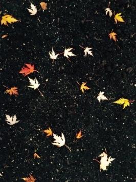 Autumn/Herbst