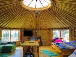 Übernachtung in einer Jurte inmitten eines Waldes bei vollkommener Ruhe: www.yurtos.lt