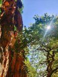 Klettersektor im Canyon am Gjipe-Strand