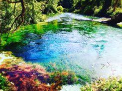Das Blue Eye im Süden Albaniens: die Farben sind bemerkenswert!