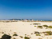 Camping am Jumeirah Beach mit Blick auf die Palme - bis Ende 2017. Ab 2018 braucht man angeblich eine Permission
