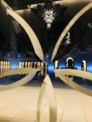 Sheikh Zayed Moschee - Blick durch die Glastür