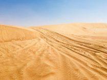 Unsere Spuren über eine Sandverwehung: wir mussten zurücksetzen, weil wir es beim ersten Mal nicht durch den weichen Sand geschafft haben