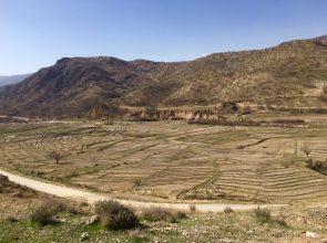 Landschaft zwischen Bandar Abbas und Shiraz