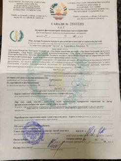Grenzdokument Tadschikistan