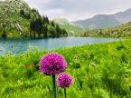 Wanderung am Sary Chelek, einer der 5 Seen