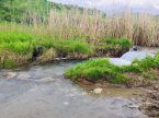 Flußdurchquerung