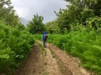 Wanderung am Sary Chelek