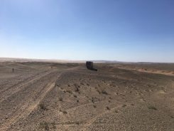 Wüste Gobi Mongolei