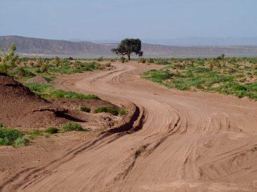 Von Gurvantes nach Bayandalay: hier mal ein gut befahrbarer Abschnitt
