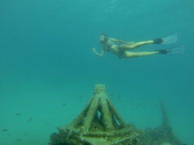 """Free-Diving/Wracktauchen in der Carlisle Bay: hier zum Wrack der """"Bajan Queen"""""""