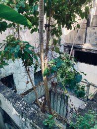 Lost Place: eines der vielen zerfallen Häuser