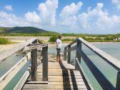 Brücke zu einer anderen Welt: hinter ihr beginnt die Savannenlandschaft
