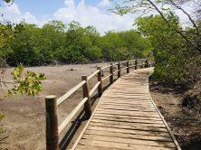 Réserve Naturelle de la presqu'île de la Caravelle
