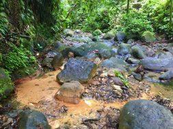 Warme Quelle abseits des Wanderwegs im Flussbett