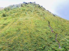 Wanderweg zum/vom Mont Pelée