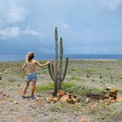 am nördlichsten Ende Curaçaos: Kakteen und Dornbüsche