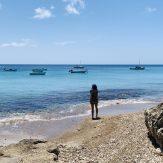 Playa Piskado: das Besondere hier ist die Fütterung der Meeresschildkröten mit Innereien der gefangenen Fische!