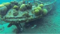 Schnorcheln am Tugboat: ein gesunkenes Boot in ca. 3-4 m Tiefe