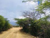 Unbefestigte Straßen im Norden von Curaçao. Noch wird hier kein Eintritt wie in so manch anderem Gebiet gefordert.