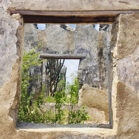 Christoffel Nationalpark: Bauruine eines Landhuis