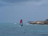 Alex surft